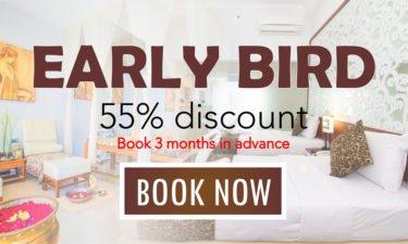 Early-bird-promo